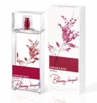 In Red Blooming Bouquet (Armand Basi) 100ml women (1)